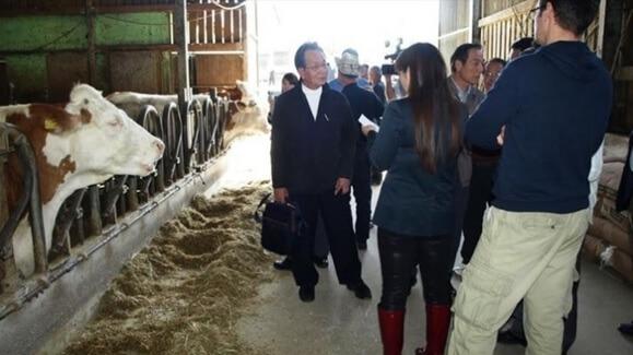 Japanski gosti u obilasku farme krava Gottstein (foto: Poslovni dnevnik)